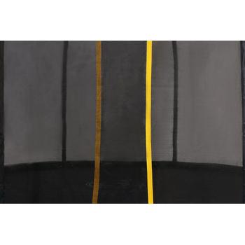 Большой каркасный батут - SWOLLEN CLASSIC 16 FT, фото 6